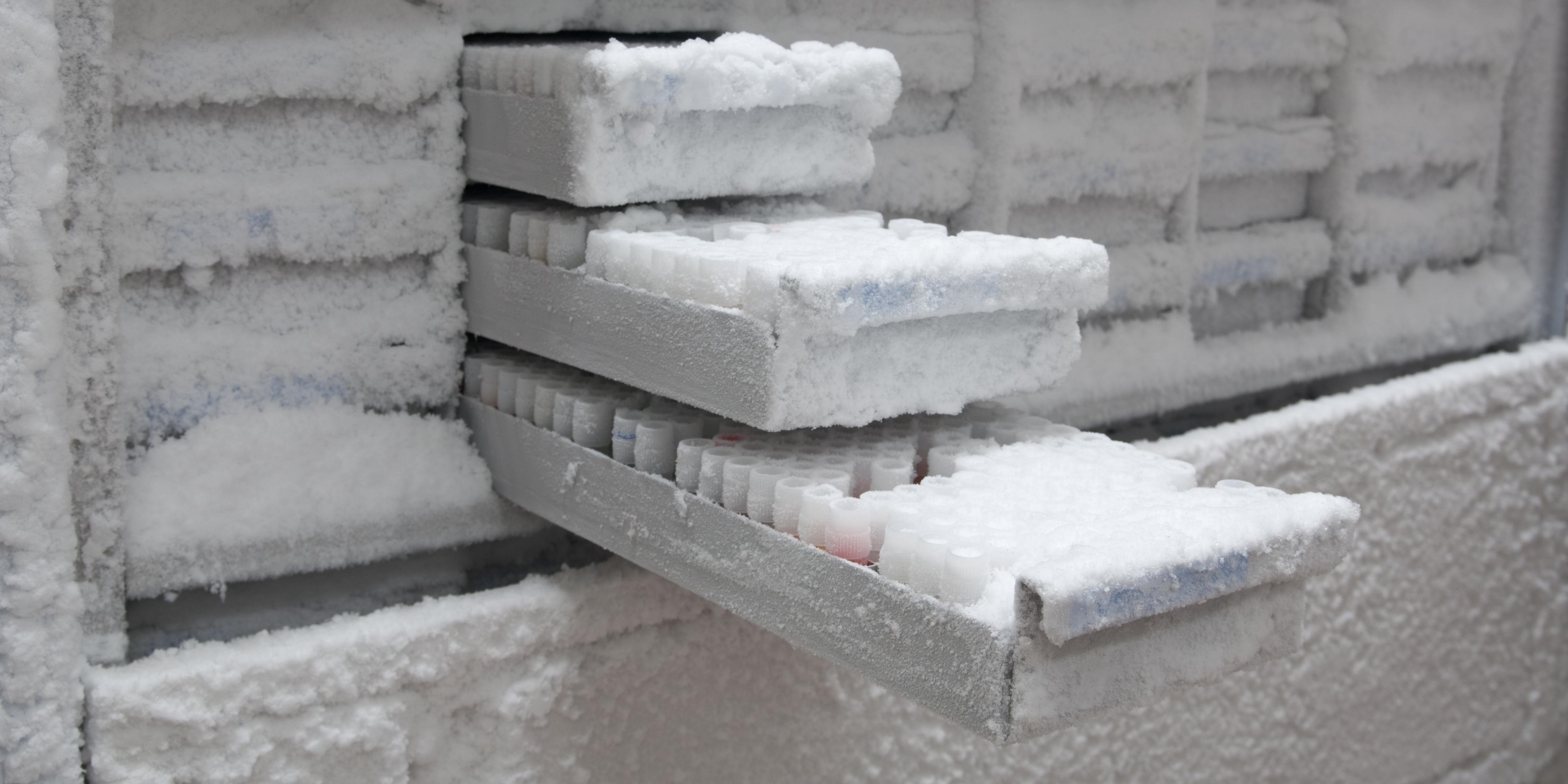 laboratory-freezer-inventory